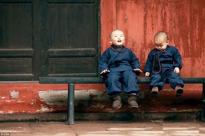 Маленькие монахи - малыши, которые покорили Интернет