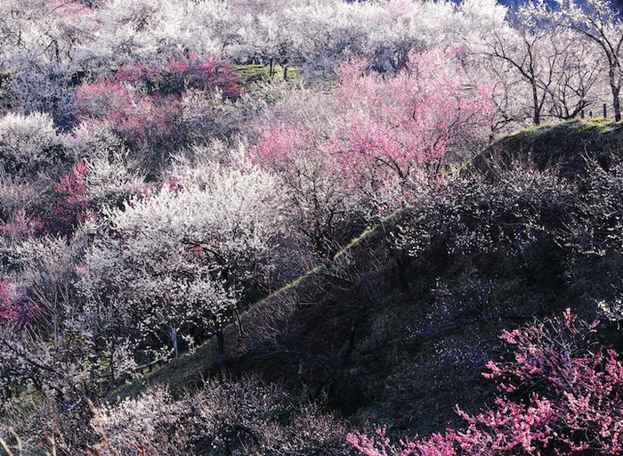 Фотография *Взрыв* от Hideyuki Katagiri