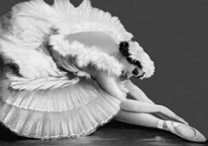 Умирающий лебедь в исполнении Анны Павловой