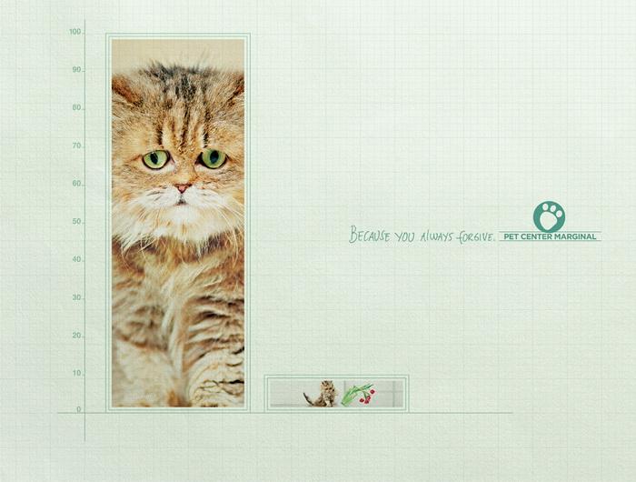 Реклама центра домашних животных Marginal