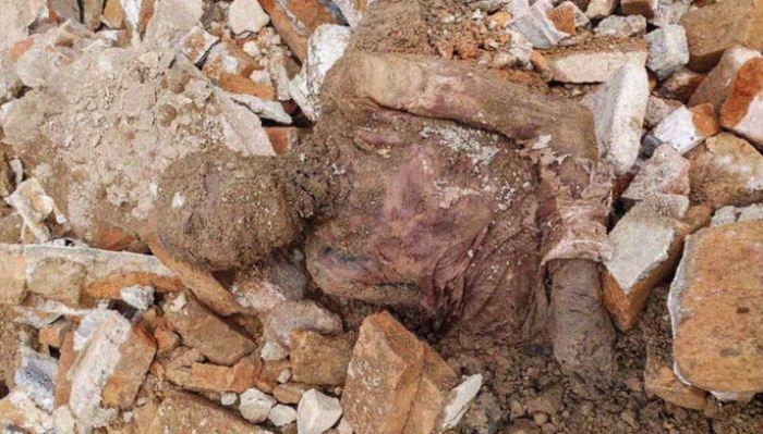 Мумия, обнаруженная во время стройки в Тегеране.