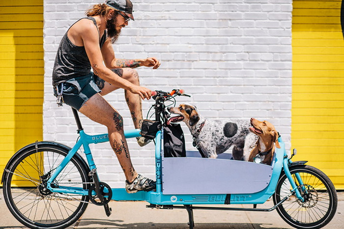 Велосипедисты на улицах Нью-Йорка