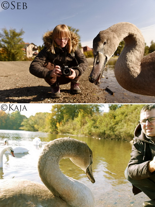 Фотограф Sebastian Luczywo устроил поединок с дочерью