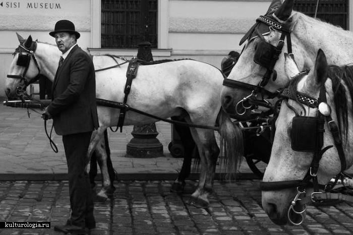 Черно-белые снимки от Скандера Хлифа.