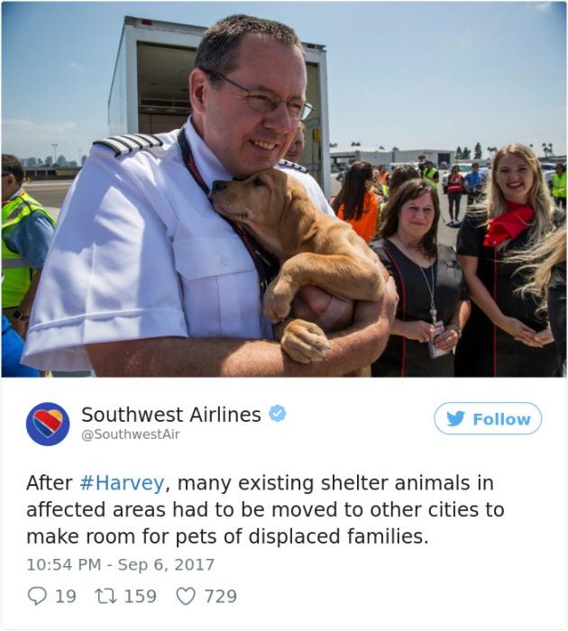 Сообщение в твиттере авиакомпании о спасательной операции.