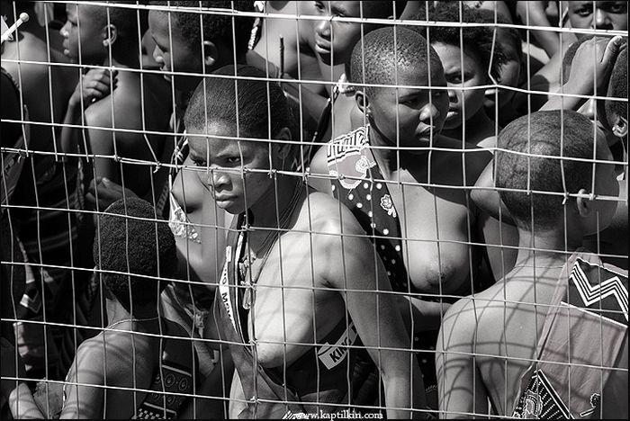 Для девушек Свазиленда Праздник тростника похож на лотерею с возможностью выиграть главный приз - стать королевой.