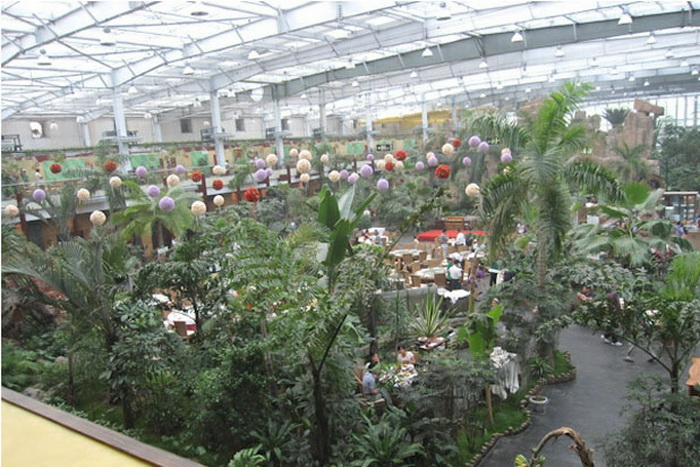 В Tang Dousheng State Park более 1500 видов экзотических растений и животных