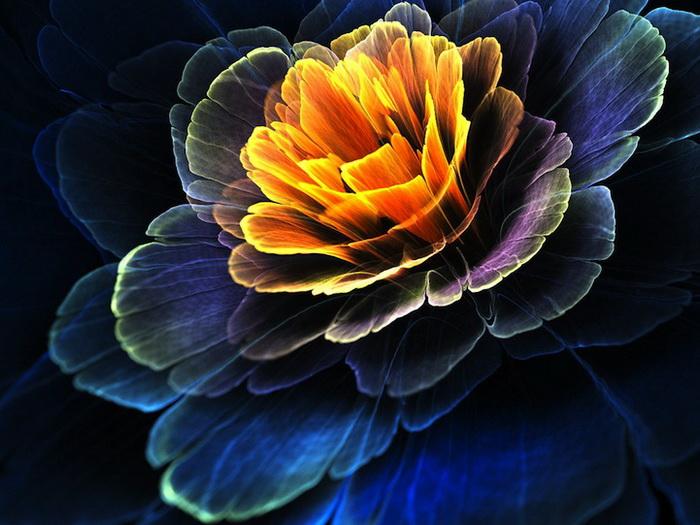 рисунки цветов картинки: