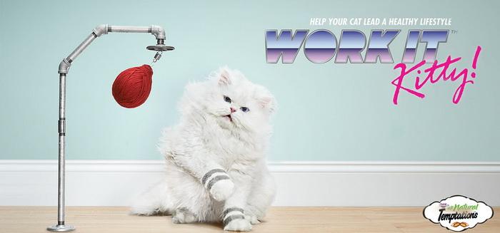 Спортивные коты в рекламе кошачьего корма Temptations Cat Treats