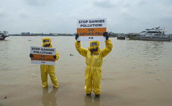 The Ganges 8 - Вокруг света: «Ганг, твои воды замутились»: индийцы решили очистить Великую реку