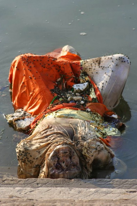 The Ganges 9 - Вокруг света: «Ганг, твои воды замутились»: индийцы решили очистить Великую реку