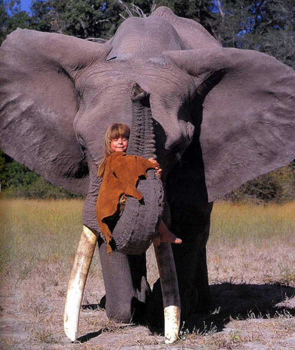 Типпи Дегре воспринимает диких животных как друзей