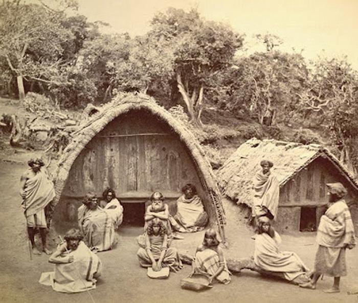 Загадочное племя тода