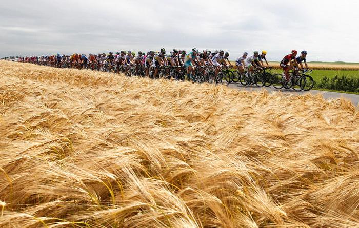 Участники велогонки Тур де Франс 2012