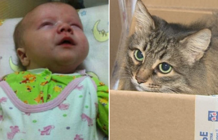 Ваня Обнинский и кошка Маша.