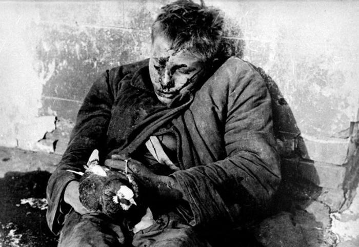 Фотография убитого Вити Черевичкина с голубем. Автор снимка - Макс Альперт. Фото: rostov-region.ru