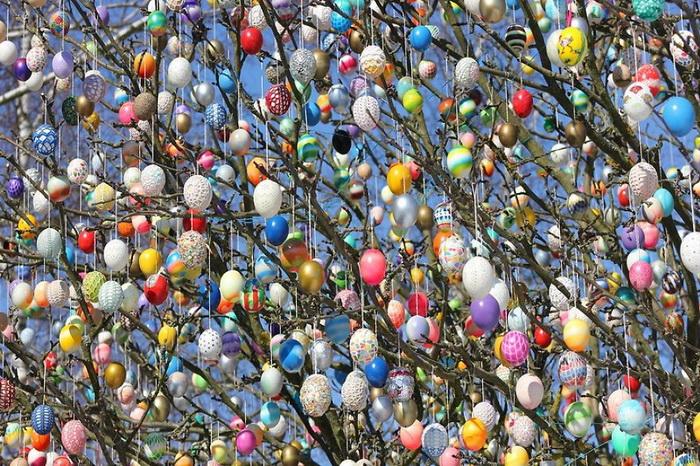 10 тысяч крашенок на пасхальном дереве