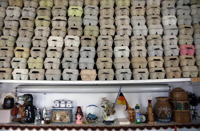 10 тысяч яиц - лимит, поскольку у семьи нет большего помещения для их хранения