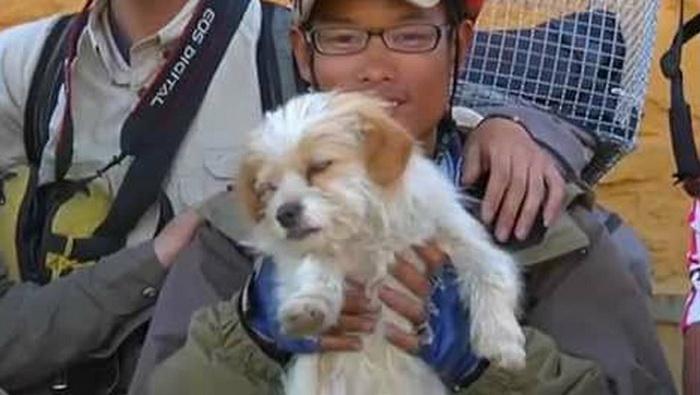 Zhang Heng со своим преданным другом - псом Xiao Sa