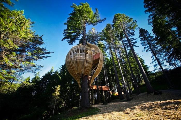 Ресторан Yellow Treehouse на высоте 12 м над землей