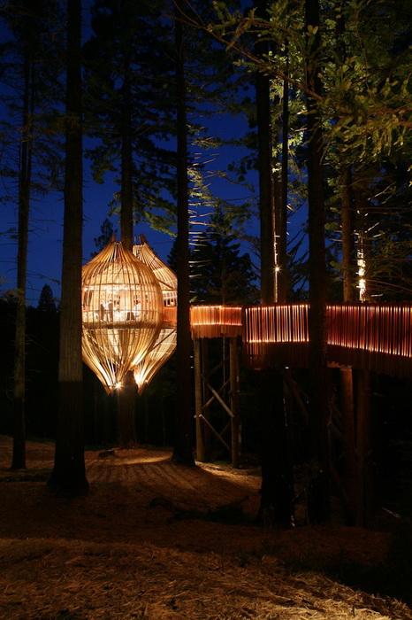 Вечерняя иллюминация ресторана Yellow Treehouse