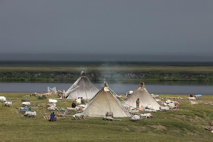Поселение ненцев на берегу реки Юрибей