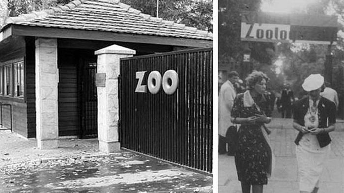 Вход в зоопарк. Довоенное фото.