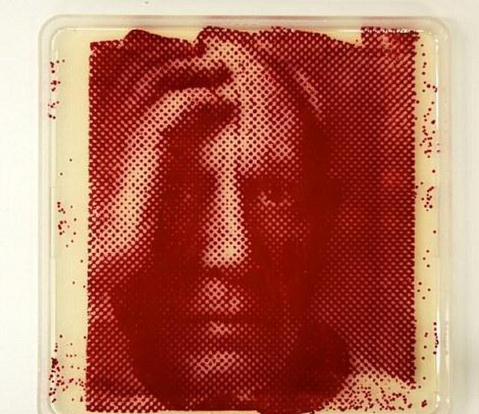*Бактериологические* портреты Закари Копфера