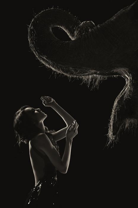 Слон и модель Daria Blanariu на фотографиях выглядят очень гармонично