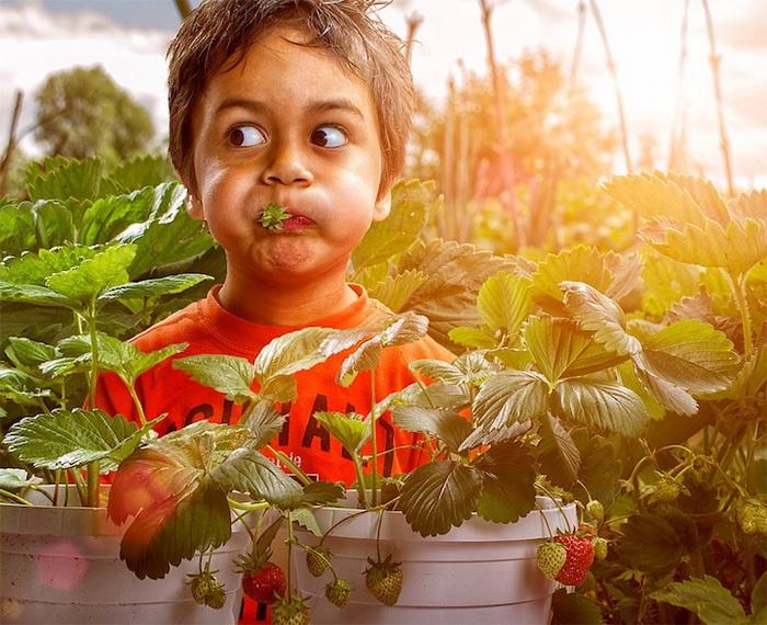 Мир детства на фотографиях Adrian Sommeling