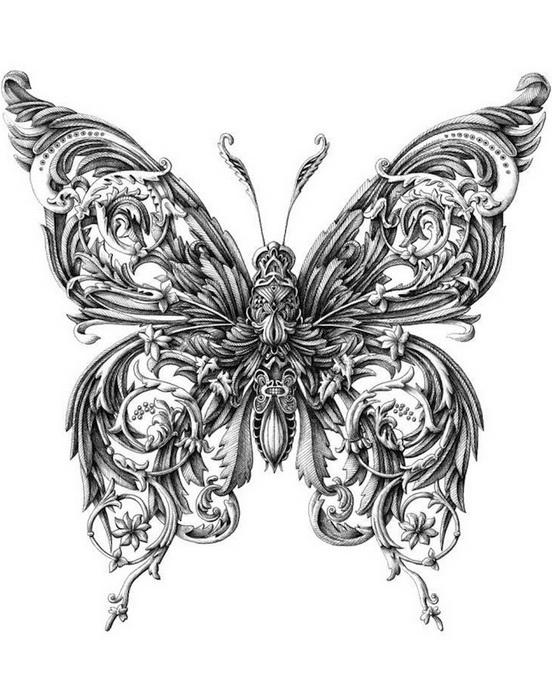 Little Wings: серия рисунков от Alex Konahins