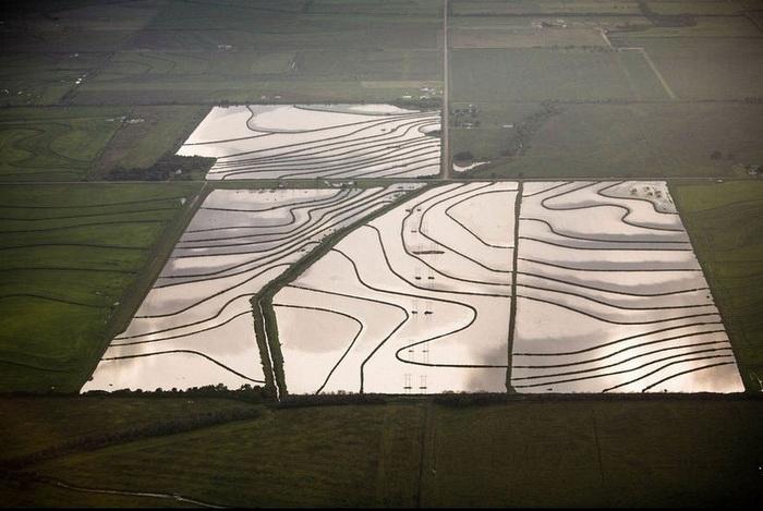 Алекс МакЛин - мастер аэрофотосъемки. Затопленное рисовое поле в штате Луизиана, 2007