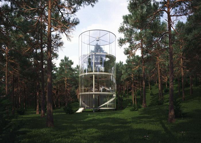 Прозрачный дом, построенный вокруг дерева