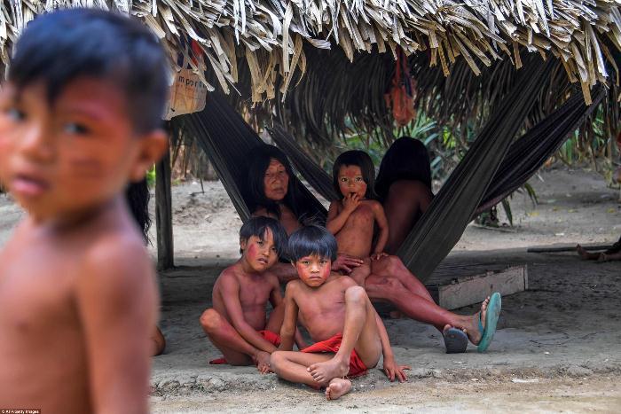 Племя ваямпи столетиями живет в тропических лесах Амазонии.