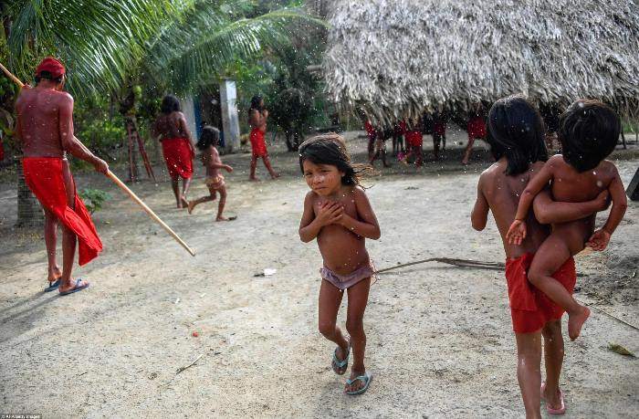 Племя ваямпи живет на территории резервации Ренка.