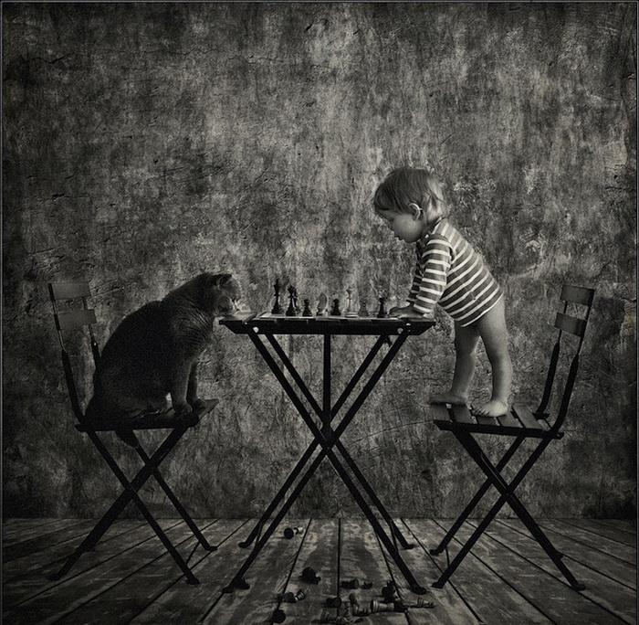 Игра в шахматы. Цикл фотографий о девочке и ее коте от Энди Проха