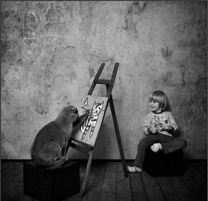 Кот-художник на фотографиях Энди Проха