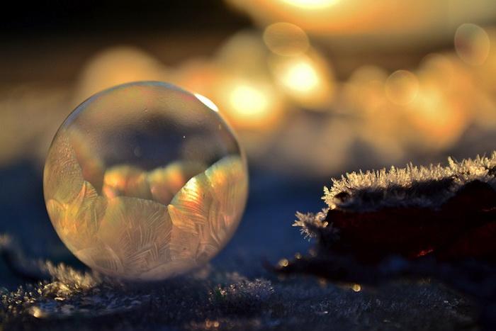 Замерзшие мыльные пузыри на фотографиях Анджелы Келли (Angela Kelly)