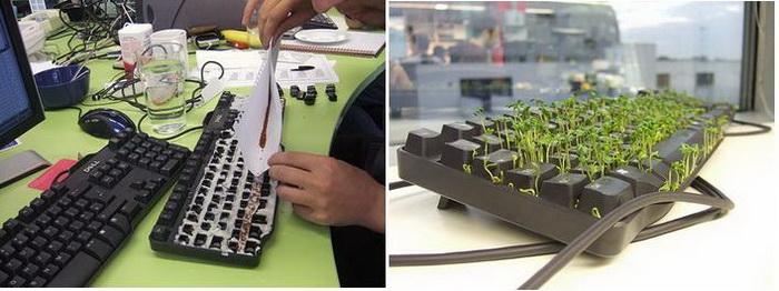 Зеленая лужайка вместо клавиатуры: розыгрыш для коллеги по работе