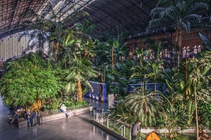 Ботанический сад на вокзале Atocha в Мадриде