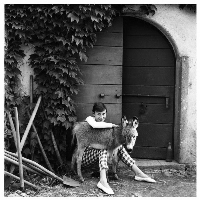 Раритетные фотопортреты Одри Хепбёрн. Фотограф Норман Паркинсон, 1955 г.