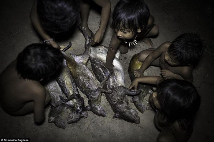 Исчезающее племя ава в Бразилии