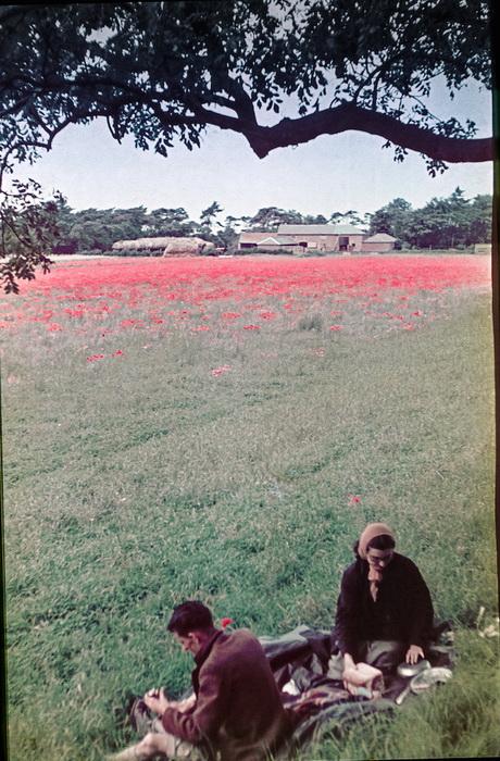 Цветущая Англия накануне войны