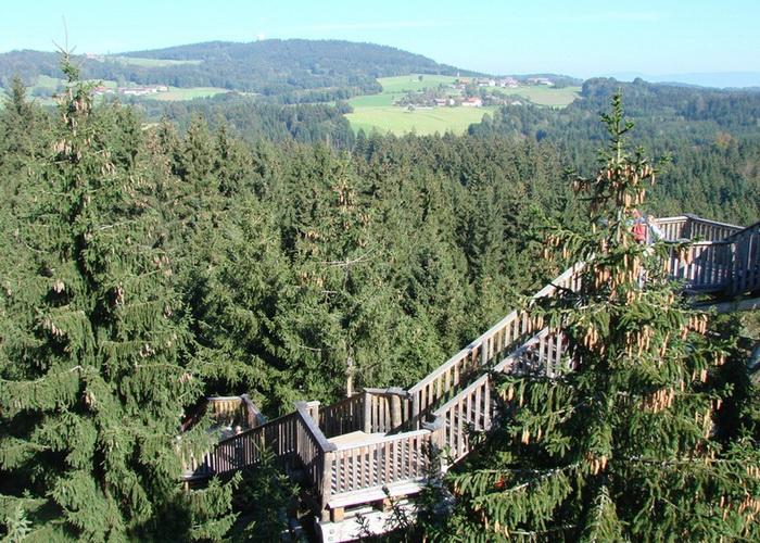 Баварский лес с высоты птичьего полета