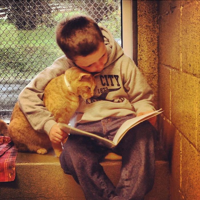 Книжные приятели: дети и кошки