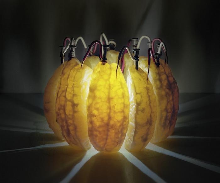 Апельсиновая батарея. Эксперимент Калеба Чарленда