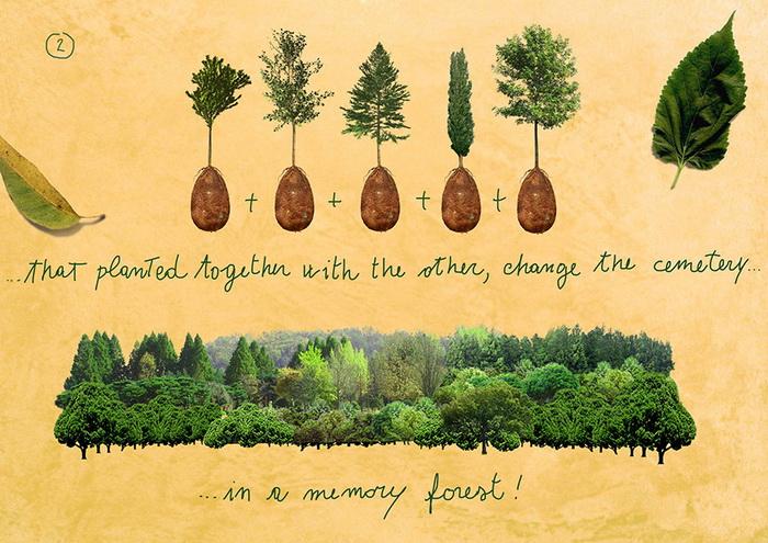 Доступные саженцы деревьев
