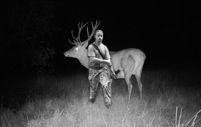 Фотомонтаж: размер оленя по сравнению с ростом человека.