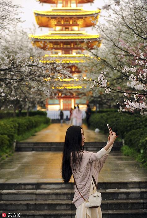 Фотография из парка Donghu в провинции Хубэй в Китае.