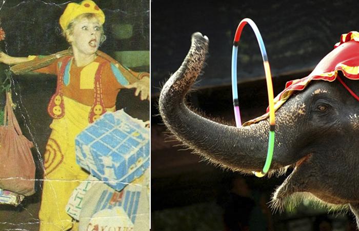 Несчастный случай в цирке
